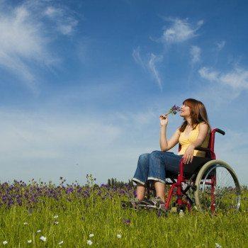 wheelchair assessment roles